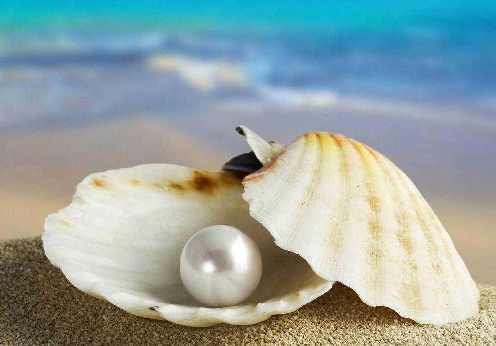 pearl ocean sea beach nature beauty beautiful wallpaper