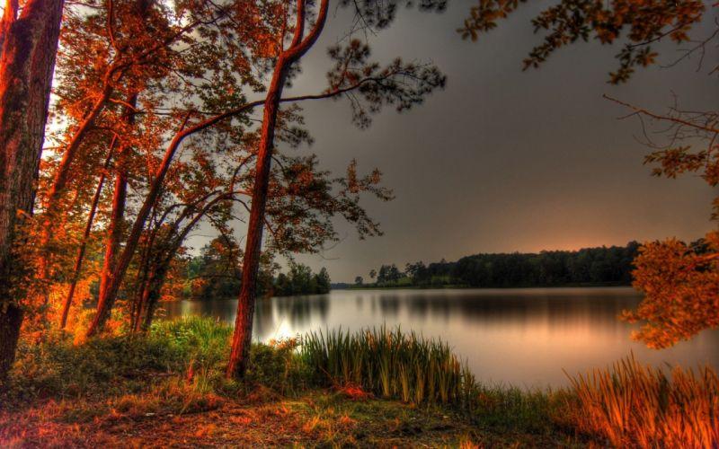 nature landscape beauty beautiful sky tree lake sunset forest wallpaper