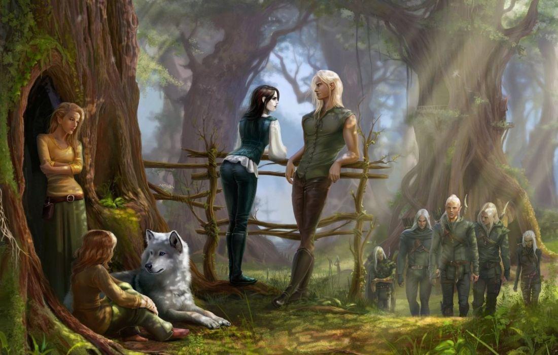 elfon gnomos fantasia bosque wallpaper