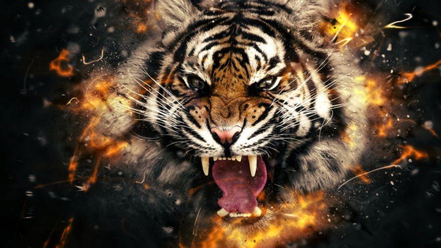 DARK evil horror spooky creepy tiger wallpaper
