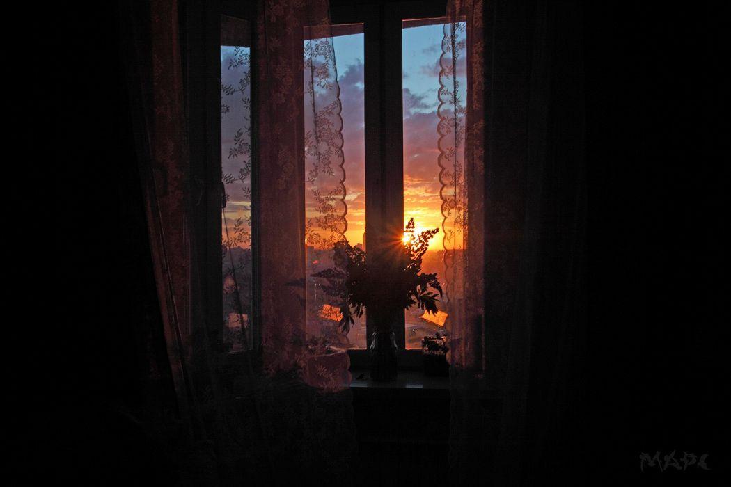 night the room is dark window sun sunset shade windowsill bouquet mood wallpaper