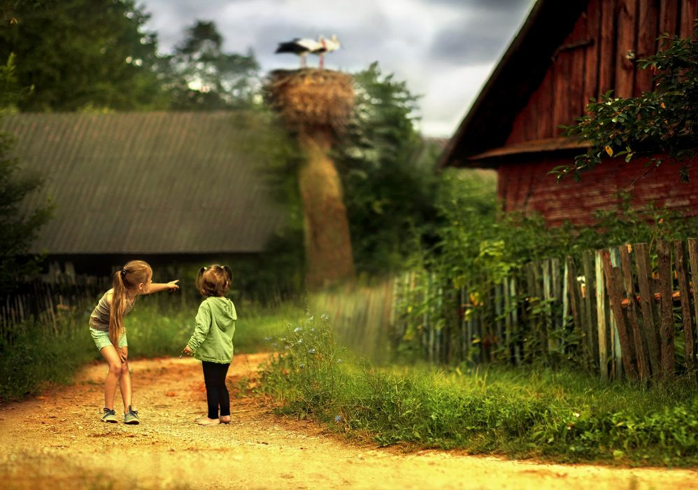 sister street village cottage stork baby farm rustic girls wallpaper