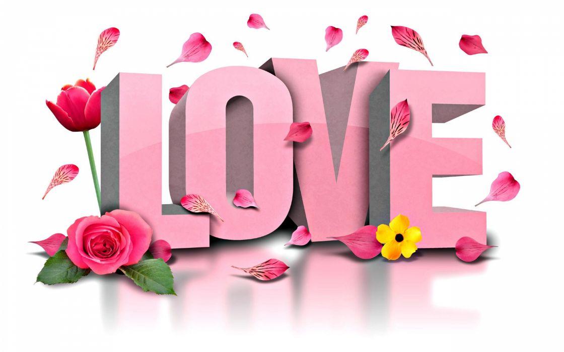 love flores rosa wallpaper