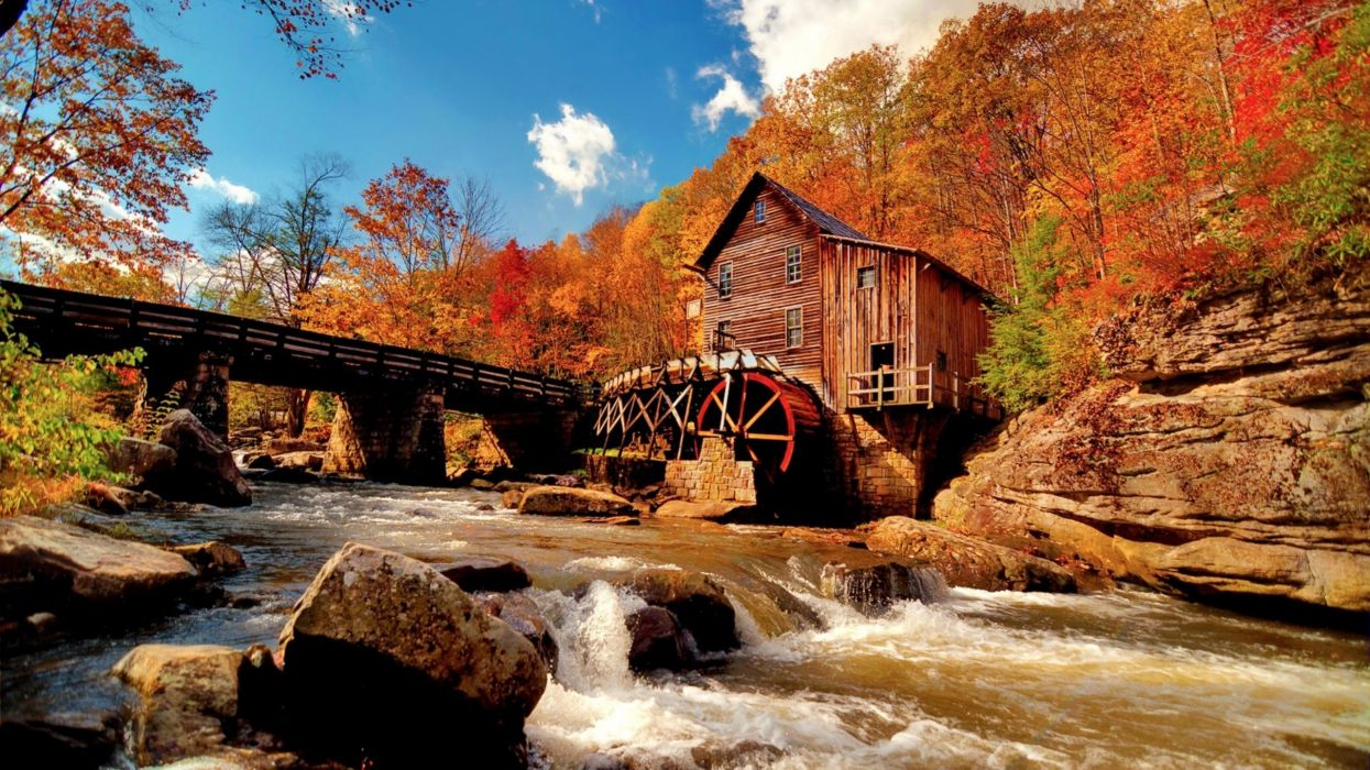 AUTUMN fall tree forest landscape nature leaves mill river bridge wallpaper