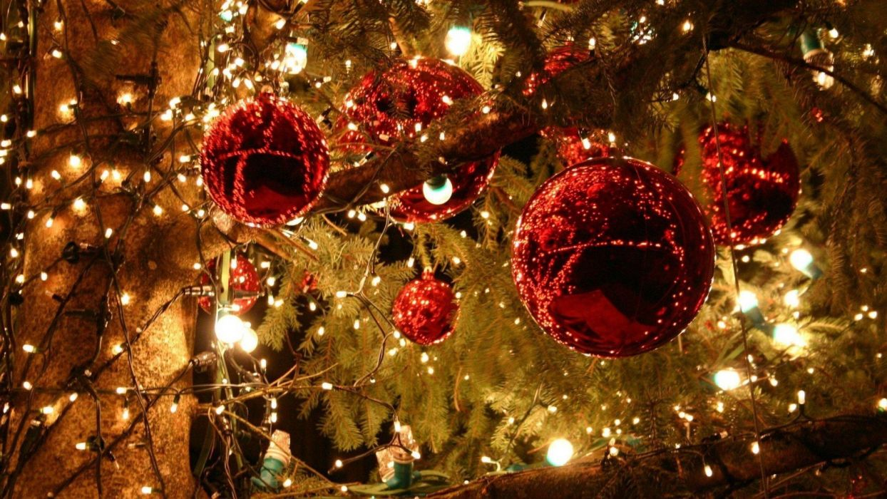 christmas trees decorated beauty wallpaper