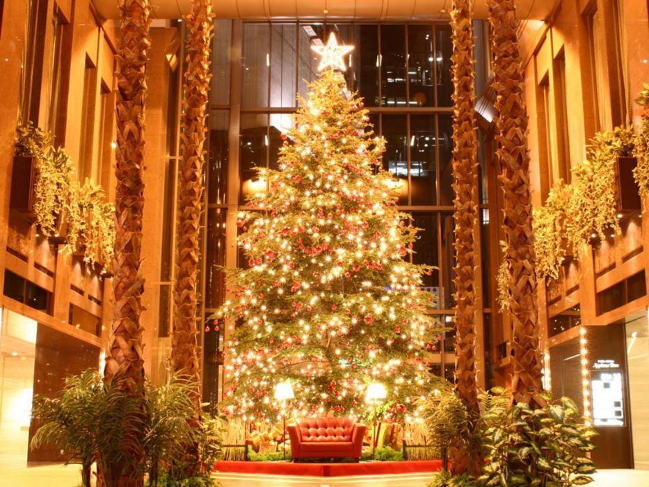 Christmas beauty Tree Cool Photos wallpaper