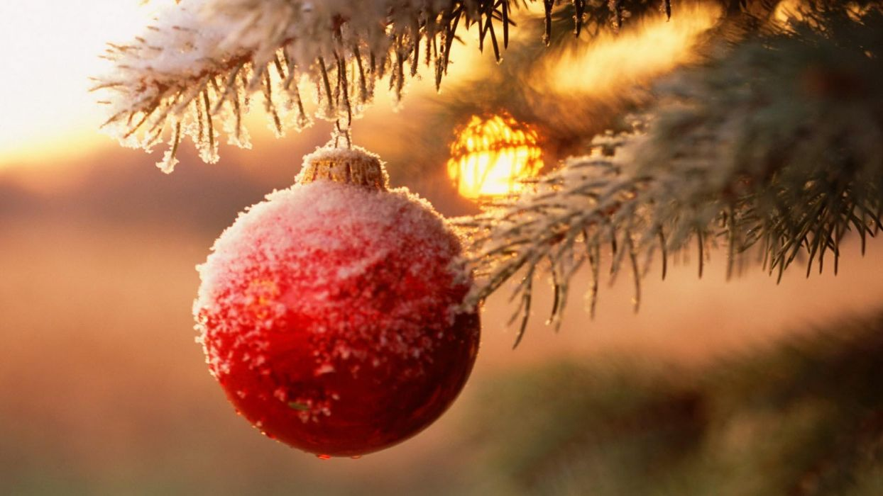 winter beauty Snow Christmas Ball Tree wallpaper