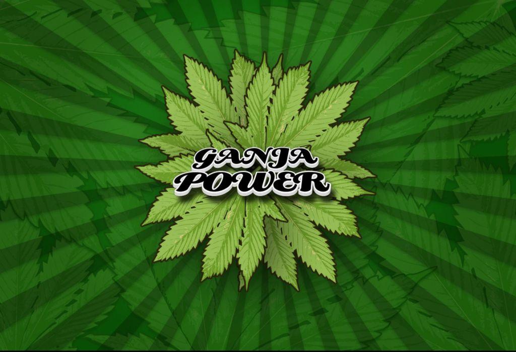 marijuana weed 420 drugs poster wallpaper