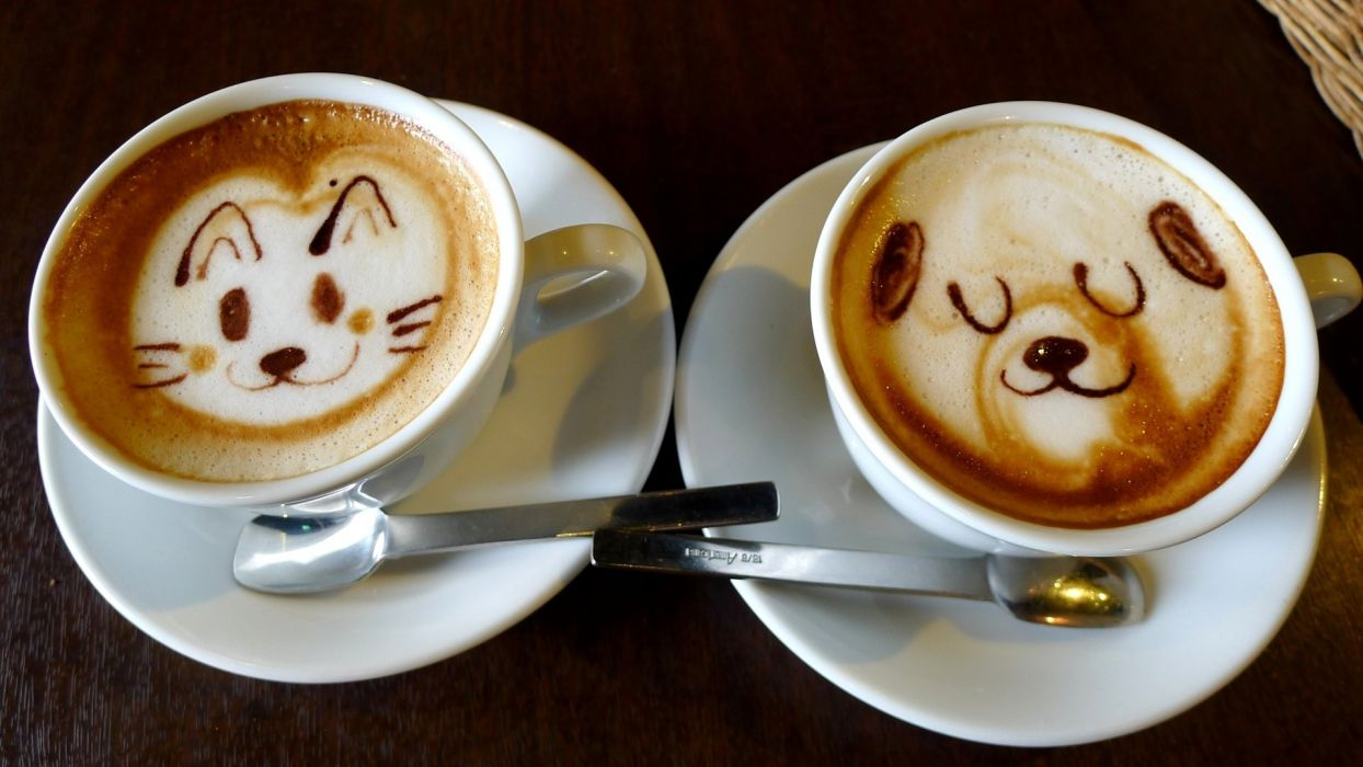 animal dog coffee food wallpaper
