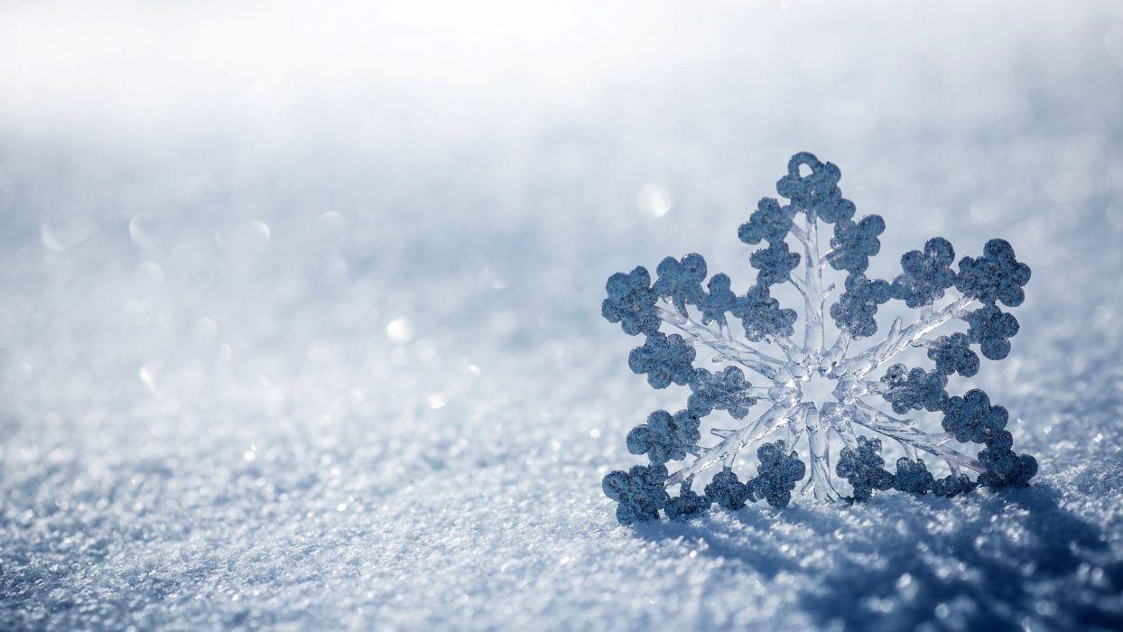 winter snowflake snow beautiful wallpaper