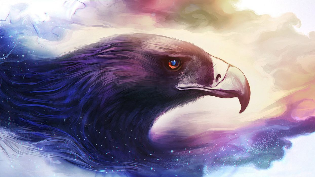 eagle art painting animal wallpaper