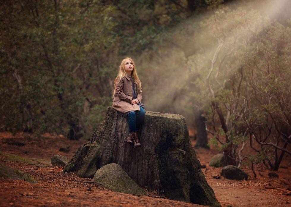 It sits on the stump girl children forest wallpaper