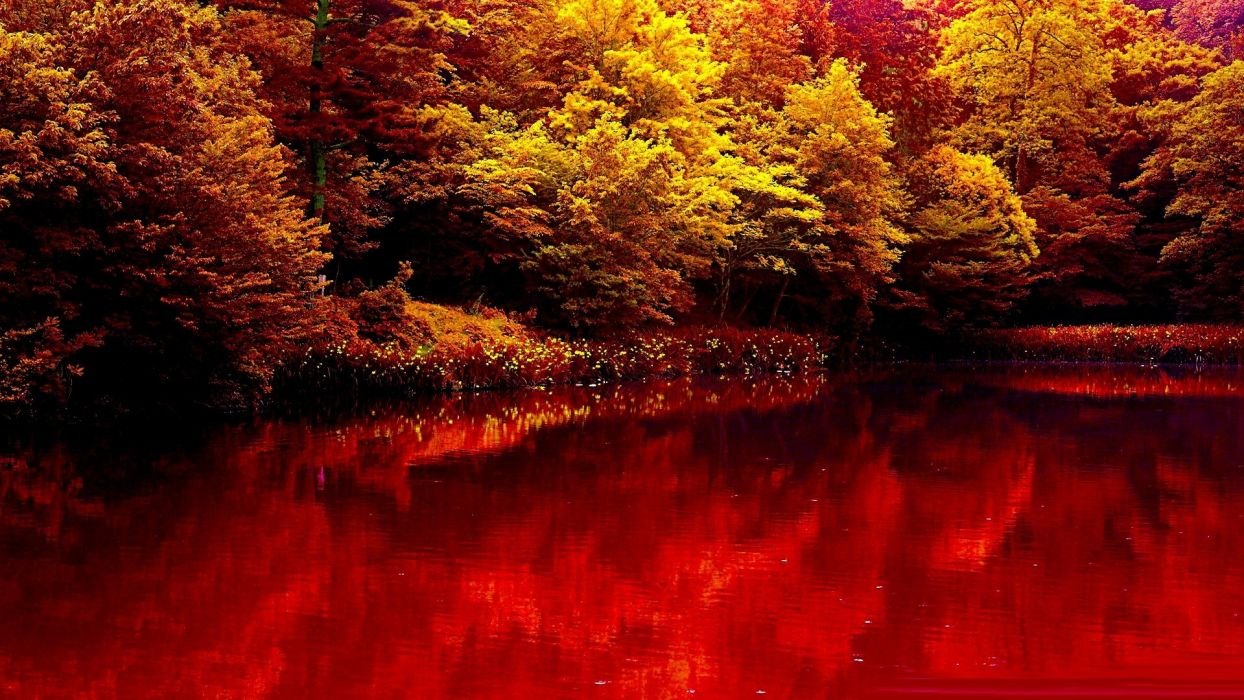nature autumn lake forest red beauty wallpaper