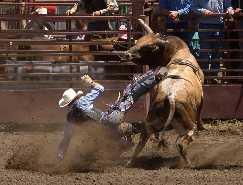 wallpaper girls rodeo sign - photo #11