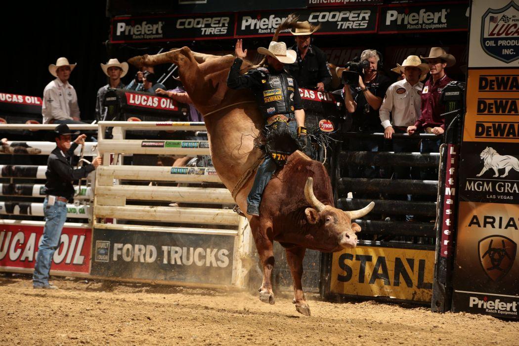 BULL RIDING bullrider cowboy western cow extreme rodeo d wallpaper