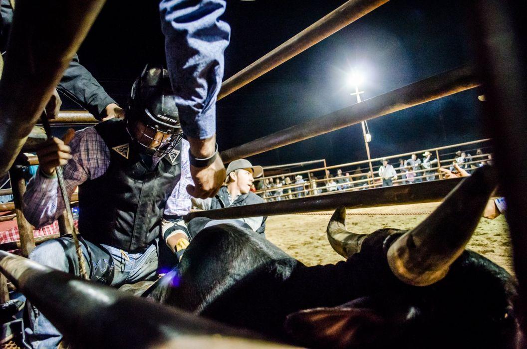 BULL RIDING bullrider cowboy western