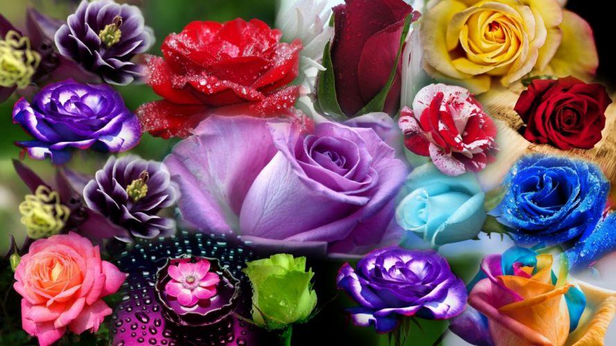 my bouquet wallpaper
