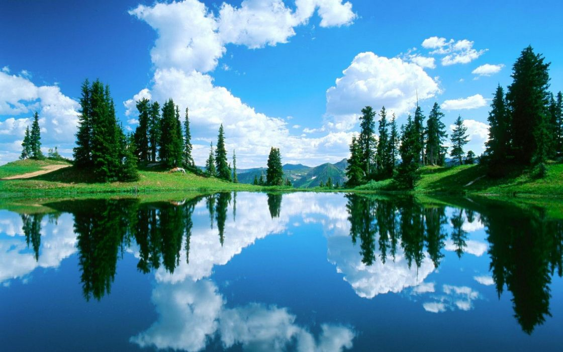 lago arboles naturaleza wallpaper