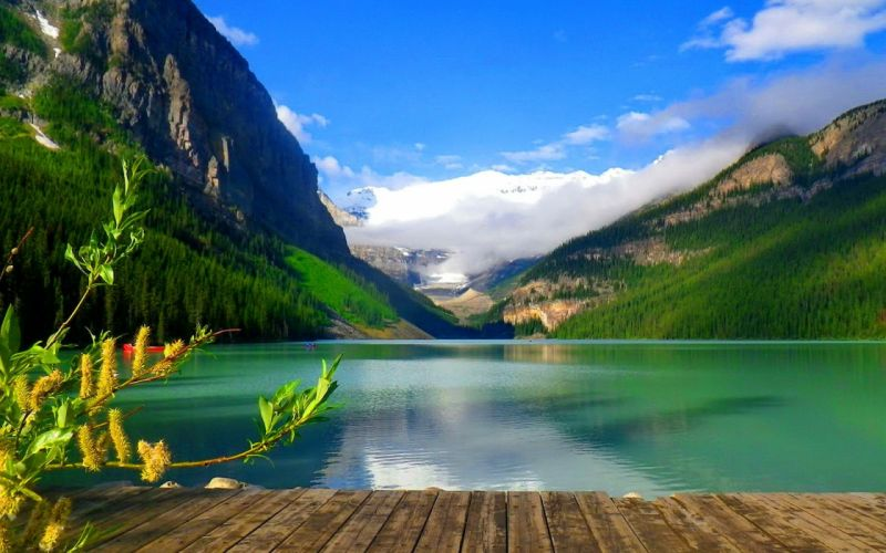 lago montaA wallpaper