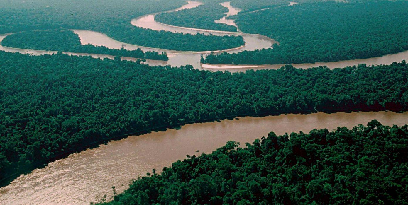 rio amazonas selva brasil wallpaper