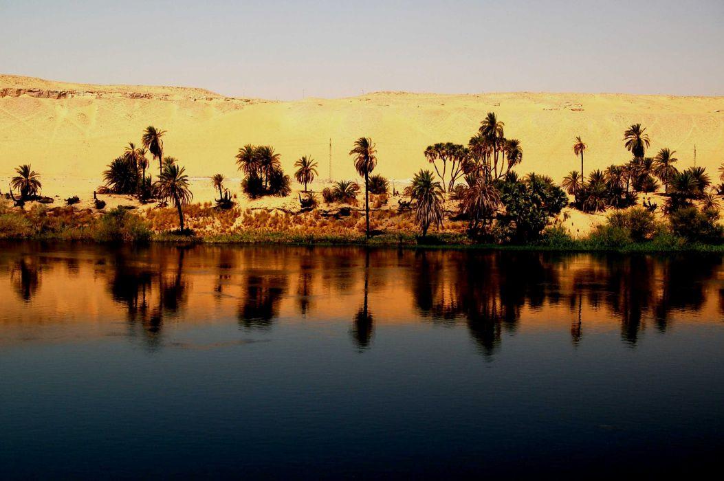 rio nilo egipto palmeras desierto wallpaper
