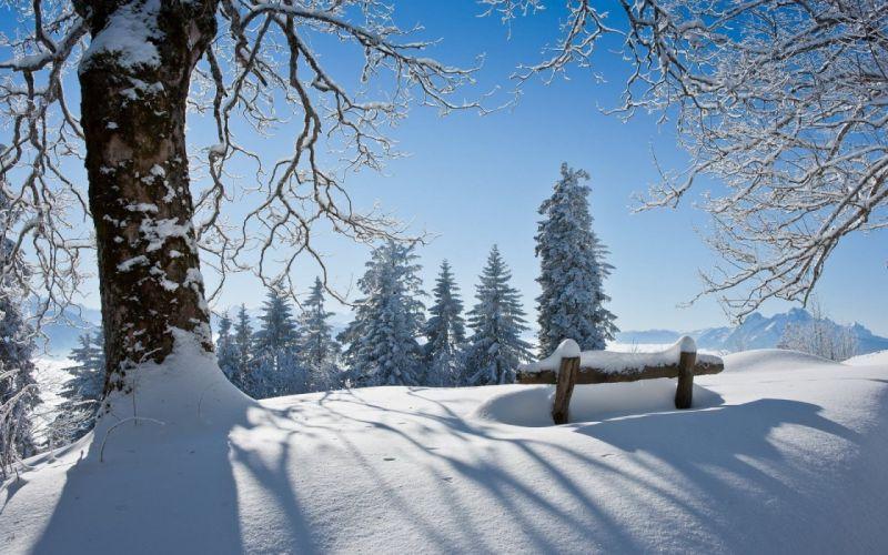 winter snow landscape nature bench wallpaper