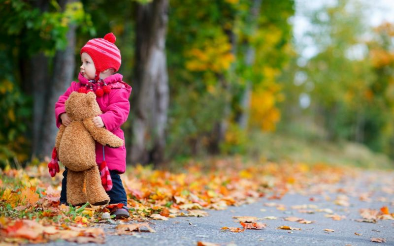 AUTUMN fall landscape nature tree forest leaf leaves baby teddy bear wallpaper