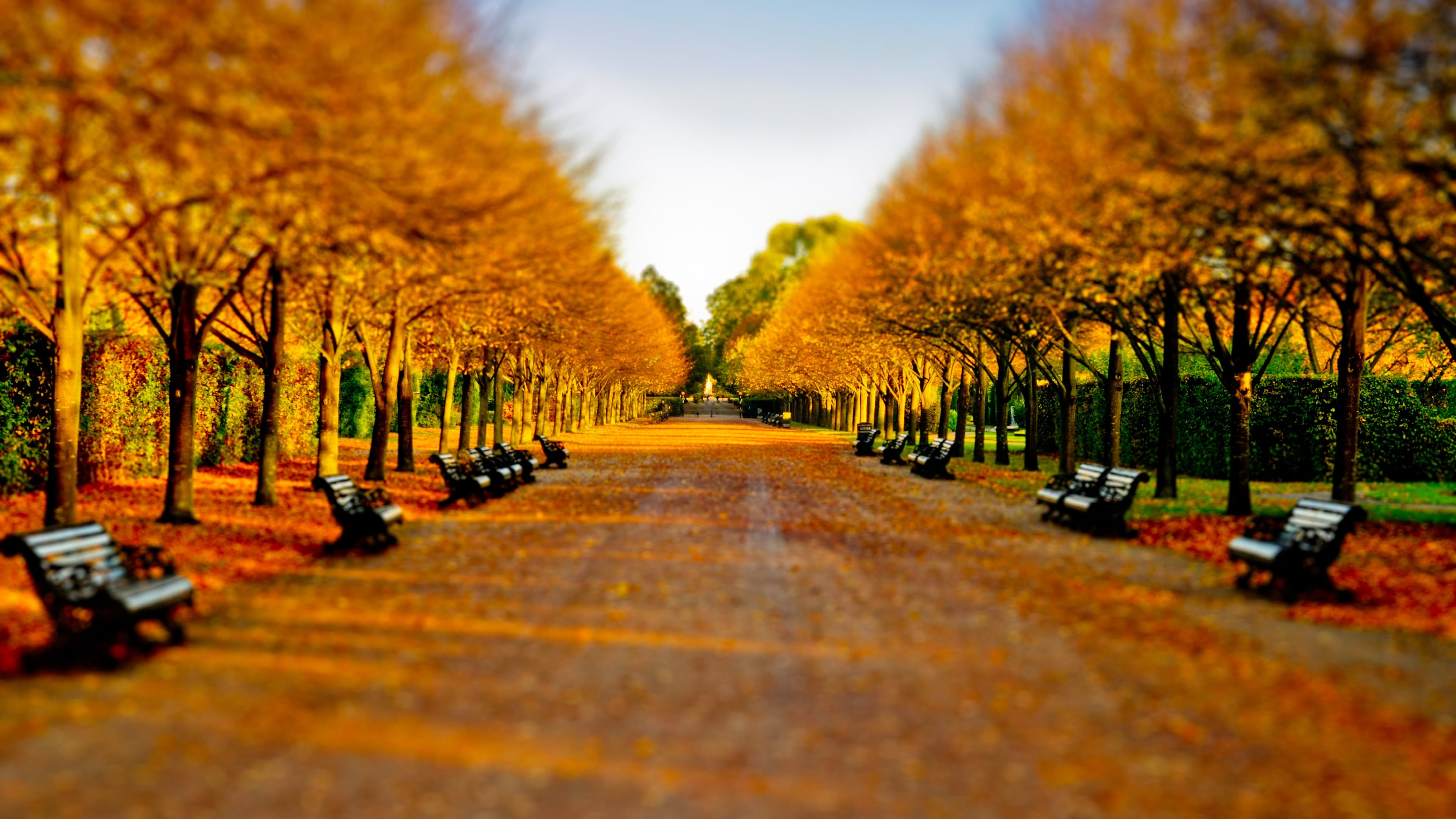 Fall Landscaping Garden Design Garden Design With Fall Landscape In Connecticut