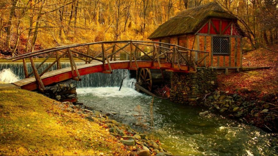 AUTUMN fall landscape nature tree forest leaf leaves path trail bridge wallpaper