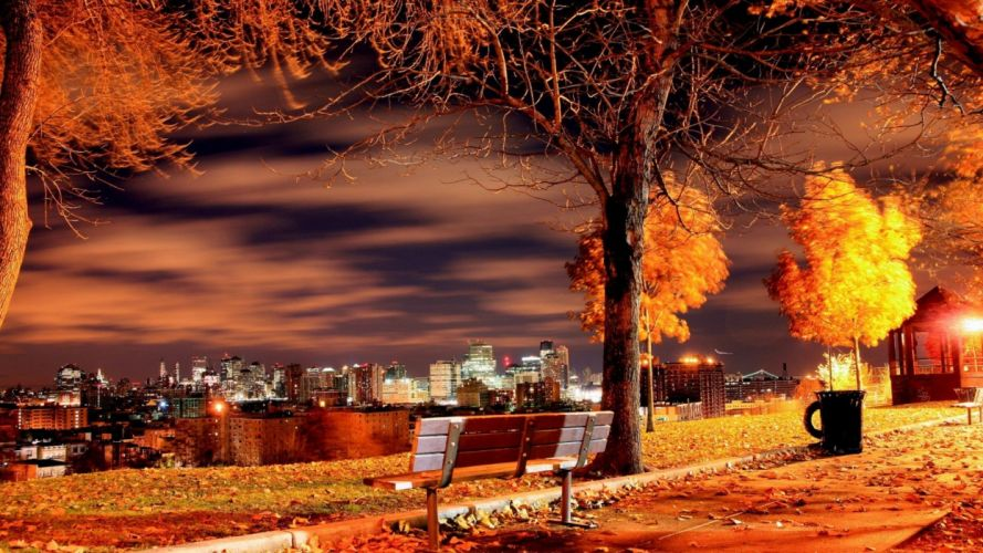 AUTUMN fall landscape nature tree forest leaf leaves path trail bench wallpaper