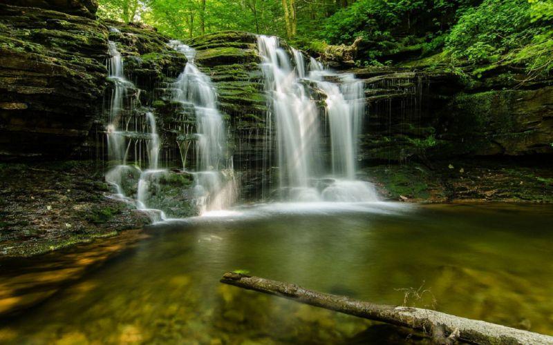 cascada bosque naturaleza paisaje wallpaper