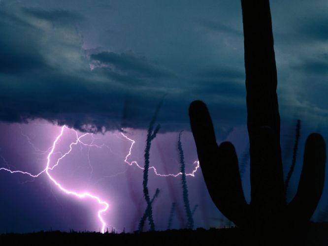STORM weather rain sky clouds nature landscape cactus lightning wallpaper