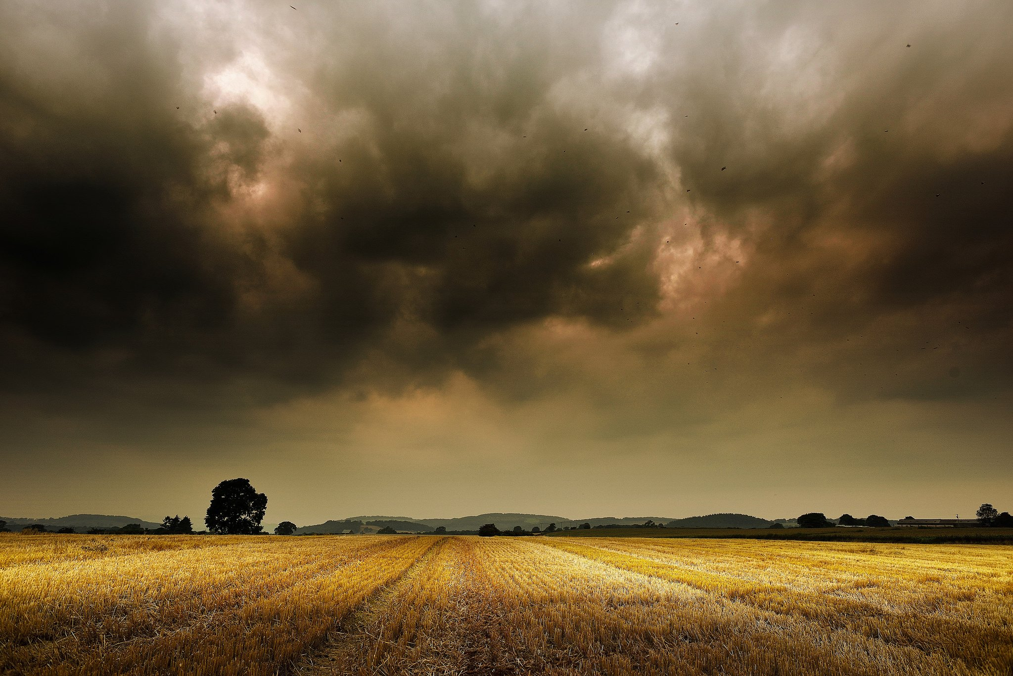 storm weather rain sky clouds nature desert sand landscape