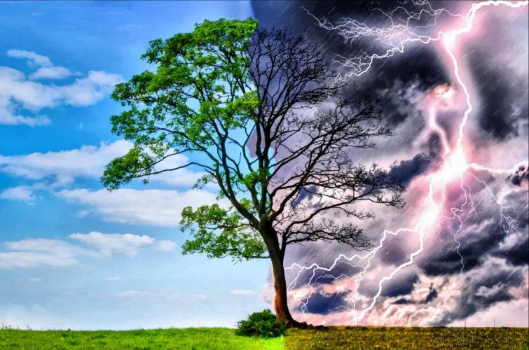 STORM weather rain sky clouds nature desert sand landscape artwork tree lightning wallpaper