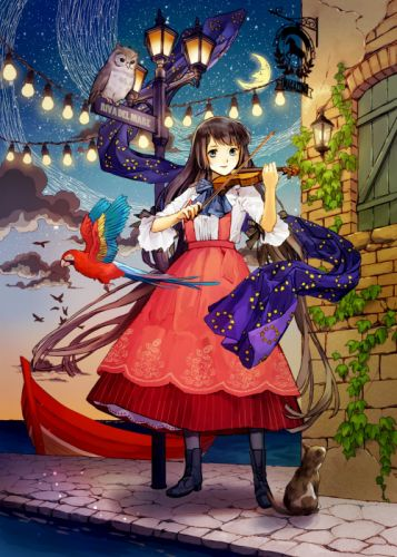 anime girl bird blue eyes boots brown hair cat dress long hair moon night sky smile violin water wallpaper
