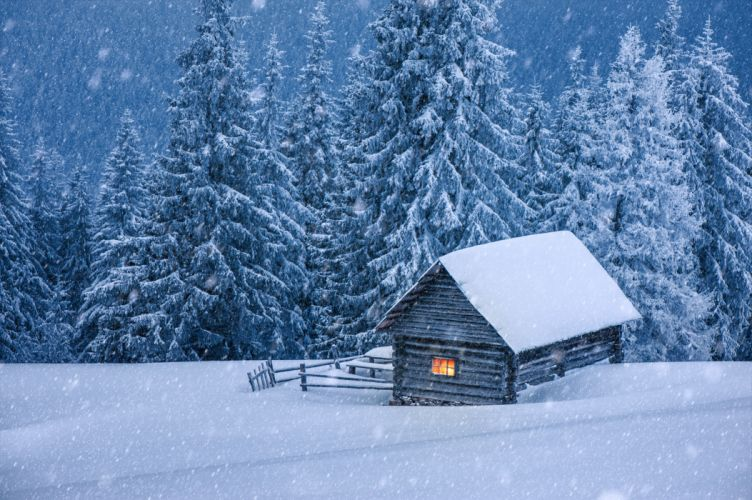 nature hut forest snow winter trees cabin wallpaper