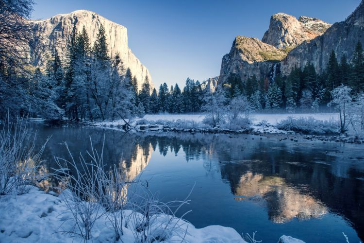 snow nature winter forest lake wallpaper