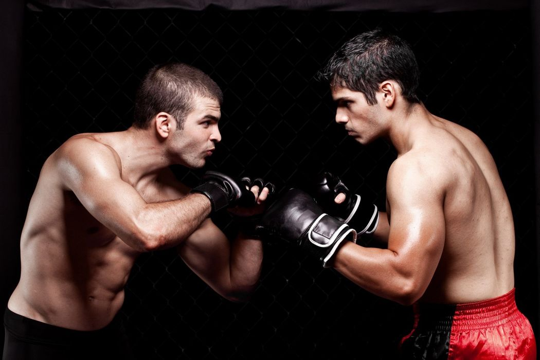 MMA martial arts action fighting warrior boxing wrestling wallpaper