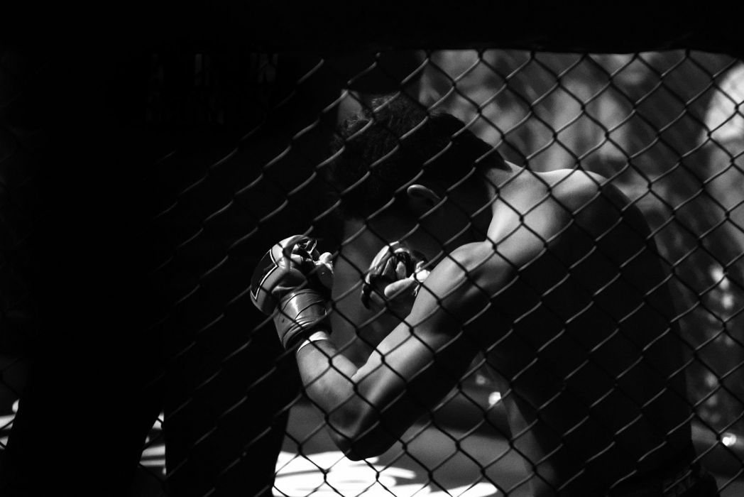 Mma Martial Arts Action Fighting Warrior Boxing Wrestling Wallpaper 1680x1122 842979 Wallpaperup