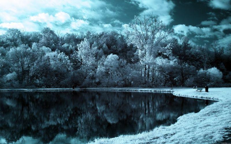 forest lake landscape nature winter wallpaper