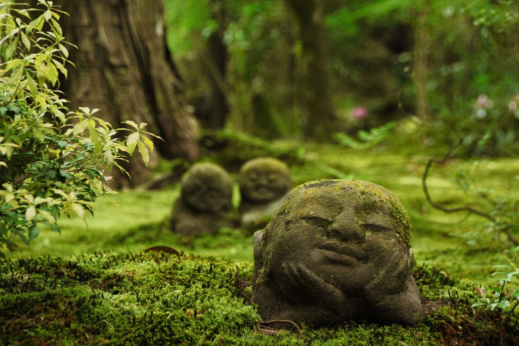 Sanzen-in Temple Ohara Kyoto Japan Japan temple sculpture religion forest moos wallpaper