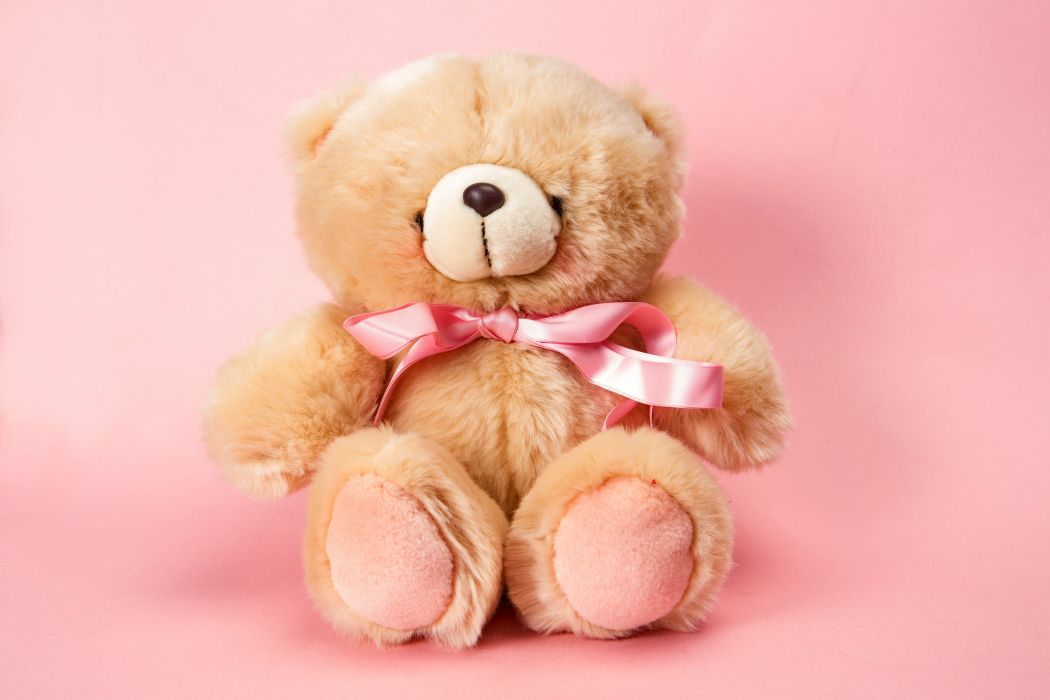 teddy bear pink cute toy wallpaper