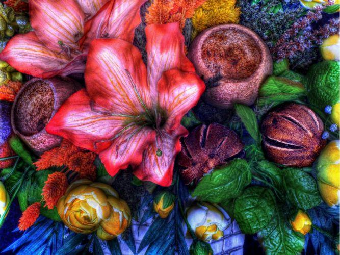 flowers mix flora hdr wallpaper