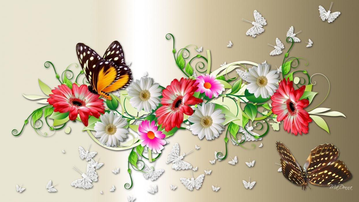 butterflies flowers colors decorations wallpaper