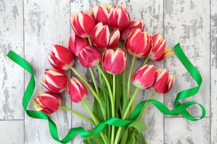 flowers tulips flowers tulips bouquet fresh wallpaper