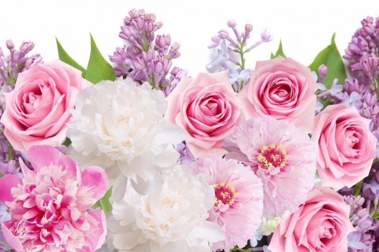 flowers peonies roses lilacs flowers peonies roses lilacs wallpaper