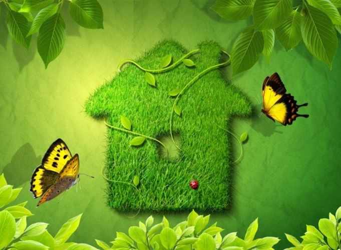 Herbal house leaves butterfly ladybug wallpaper
