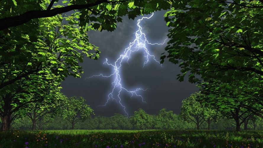 night trees garden storm lightning wallpaper