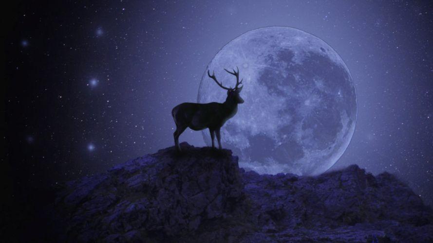 moon deer sky animal fantastic wallpaper