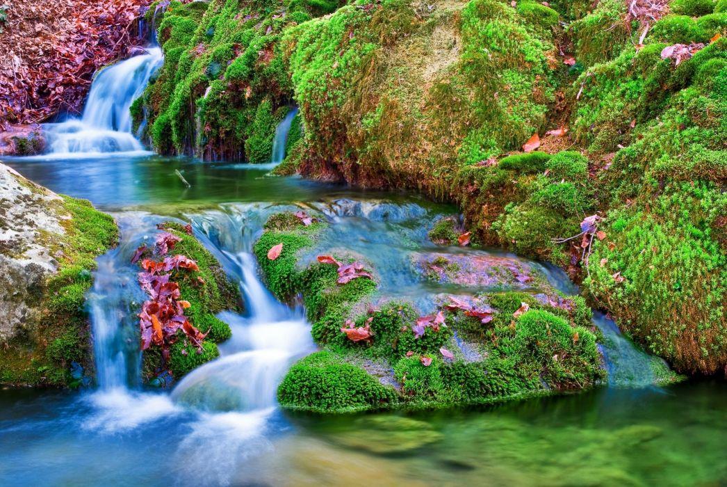 cascada selva vegetacion naturaleza wallpaper